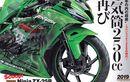Ninja 250 cc 4 Silinder Bakal Diproduksi, Kawasaki ; Kalau Konsumen Mau Kenapa Tidak?