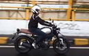 Yamaha XSR 155 Miliki Warna Baru, Mau Kredit Cicilan Termurah Enggak Sampai Rp 1 Jutaan