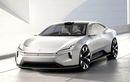 Polestar Kembangkan SUV Anyar, Pede Bidik Tesla Sebagai Saingan
