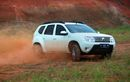 Renault Duster Muncul Suara Berdecit Seperti Tikus, Bukan Sokbreker atau Bushing, Dari Sini Asalnya