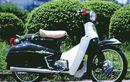 Kenalan Sama Honda Cubra, Super Cub Unik Bertampang Hampir-Davidson, Tampilannya Gagah Ala Bagger