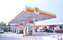 Buruan Serbu Bensin Gratis dari SPBU Shell Ketahui Cara dan Waktunya