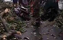 Jarak Pandang Berkurang Akbat Hujan Lebat, Seorang Pemotor Tewas Tabrak Pohon Tumbang Di Tengah Jalan
