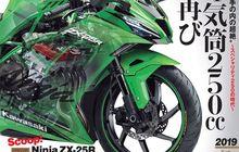 Mantap Nih, Kawasaki Ninja 250 4 Silinder Bakal Hadir 2 Varian, Ada Versi Murahnya Bro