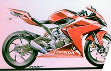 Bikin Bikers Kepo, Penampakan Mesin 250 Cc Honda CBR, Bakal Balap Ninja ZX-25R?