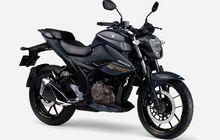 Mirip Yamaha Byson Tapi Mesin 250 cc, Ini Dia Naked Bike Baru Suzuki