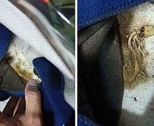 Waspada! Bagian-bagian Helm Ini Paling Sering Kemasukan Kotoran Sampai Binatang Kecil