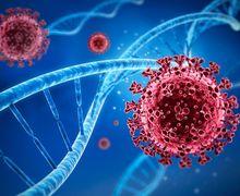 Virus Nipah Diprediksi Jadi Pandemi Baru, Lebih Bahaya dari Covid-19?