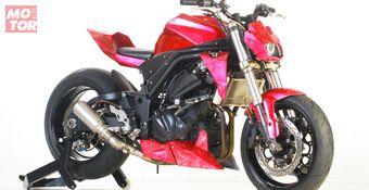 Kawasaki Ninja 250R 2010