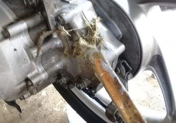 Masih Jarang Dijumpai, Tempat Pencucian Motor Ini Pakai Bambu Bersihkan Debu dan Sisa Oli