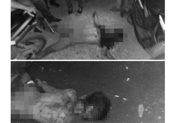 Kapok, Spesialis Pencuri Motor di Masjid Meregang Nyawa Saat Kabur Bawa Honda CBR 150R