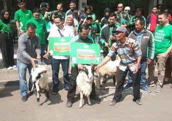 Mantap, Jelang Idul Adha, Driver Ojek Online di Bandung Dapat Domba Gratis Untuk Berkurban