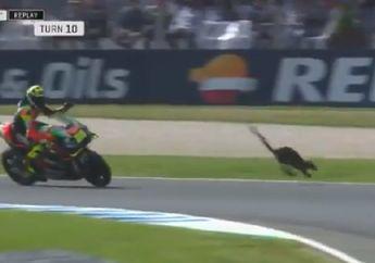 Ngeri, Video Detik-detik Andrea Iannone Nyaris Tabrak Binatang Lewat di FP2 MotoGP Australia