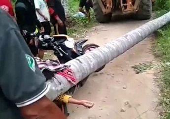 Diduga Gak Langsung Ditolong Oleh Warga, Seorang Tukang Ojek Tewas Setelah Tertimpa Pohon Kelapa Setelah Antar Penumpang