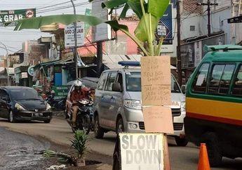 Bandung Geger, Tidak Kunjung Diperbaiki, Jalan Raya Cihampelas-CIlilin Ditanami Pohon Pisang, Banyak Motor Terjatuh Karena Lubang Besar