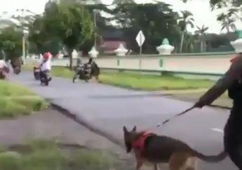 Bubarkan Balap Liar, Tim Polisi Kerahkan Anjing Pemburu Bikin Pembalap Kocar-kacir Gak Karuan