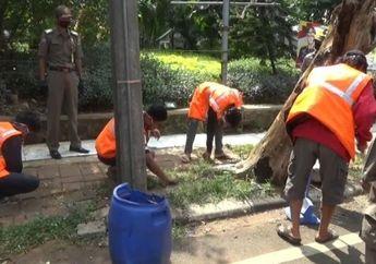 Kapan Kapoknya, Sebanyak 25 Pemotor Pelanggar PSBB di DKI Jakarta Dihukum Angkut Sampah, 5 Lainnya Didenda Rp 250 Ribu