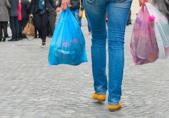 Awas Jangan Gak Tau, Mau Belanja? Jangan Lupa Bawa Tas Kain Dari Rumah, Mulai 1 Juli Di Jakarta Belanja Gak Boleh Pakai Kantong Plastik