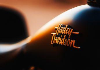 Bocor Bro! Ternyata Begini Tampang Motor Baru Harley-Davidson 300 cc