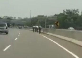 Viral Video Pesepeda Masuk Jalan Tol dan Berani Lawan Arah, Perekam: Wah Gak Bener Ini