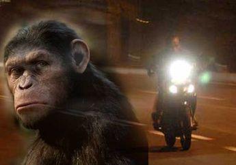 Zaman Sekarang Masih Ada Gak Yah, Mitos Joki Balap Liar Main Ilmu Hitam Pakai Ilmu Monyet?