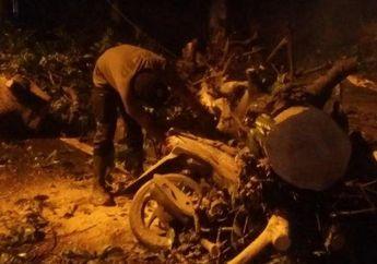 Bogor Geger, 8 Motor Tertimpa PohonTumbang Setinggi 10 Meter Akibat Hujan Deras dan Hujan Es