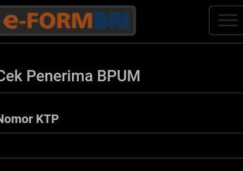Dari HP Cek Namamu di Link Ini Apakah Termasuk Penerima Bantuan Pemerintah BLT Rp 2,4 Juta