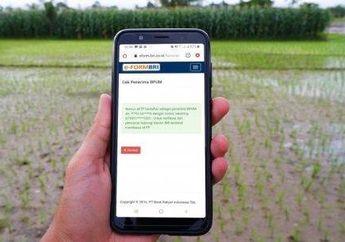 Cek BRI Online dari HP Bantuan Pemerintah Rp 2,4 Juta Apa Termasuk Buat Anda