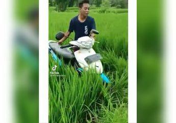 Heboh Motor Matic Mendadak Nyebur ke Sawah, Wajah Bocah Berlumuran Lumpur