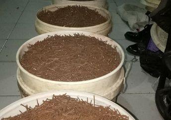 Buset! Modal Magnet, Relawan Saber Community Sudah Kumpulkan Ratusan Kilo Ranjau Paku