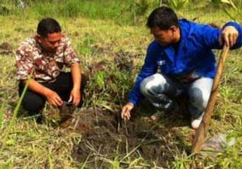 Test Ride Yamaha X-Ride Lakukan Penanaman 1000 Pohon di Gunung Merapi