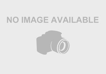 Pemotor Histeris! Detik-Detik Tiang Listrik Roboh Timpa Honda HR-V