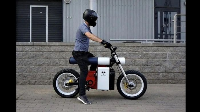 Motor Listrik Punch Moto