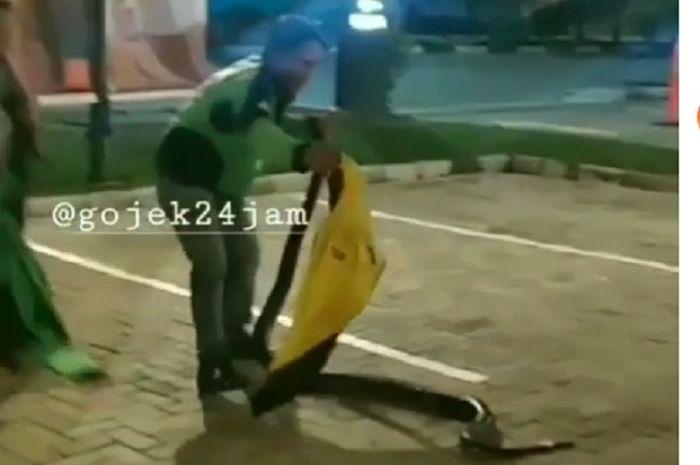 Driver ojol menangkap ular di parkiran restoran cepat saji di Banjarmasin