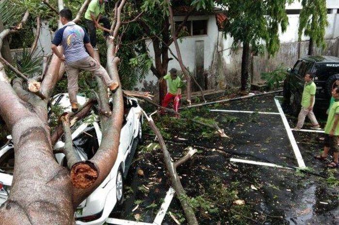 Beberapa mobil dan motor rusak parah akibat tertimpa pohon di Cianjur, Jawa Barat