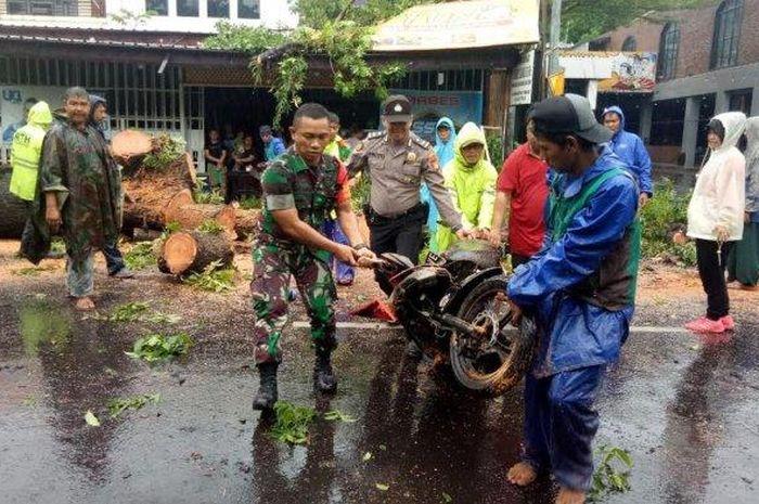 Tiga motor remuk terkena pohon tumbang di Makassar, Sulawesi Selatan