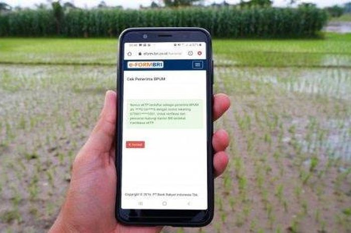 Cek BRI online bantuan pemerintah Rp 2,4 juta apa termasuk untuk anda